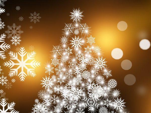 Kerstfotospeurtocht | Kerstmarkt (Geannuleerd)